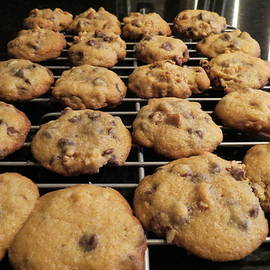 Chocolate Chip Cookies by Kay Novy