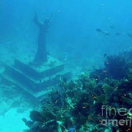 Christ of the Abyss Key Largo by Charlene Cox