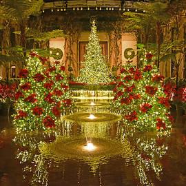 Dan Myers - Christmas At Longwood Gardens