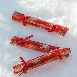 Christmas Crackers In Snow - Amanda Elwell