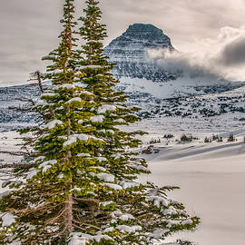Christmas In Glacier National Park by Brenda Jacobs