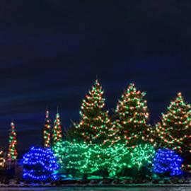 Patti Deters - Christmas Lights Panorama
