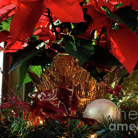 Christmas Red by Nava Thompson