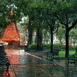 Christmas Tree In Bienville Square Mobile Alabama by Michael Thomas
