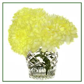 Terence Davis - Chrysanthemums In Crystal