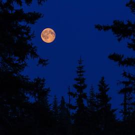 Chugach Moon by Sara Hudock