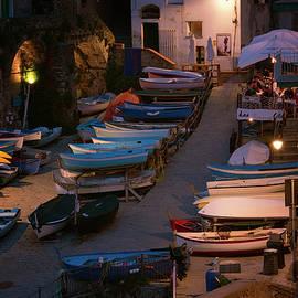 Joan Carroll - Cinque Terre Boats at Night