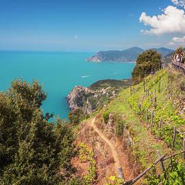 Joan Carroll - Cinque Terre Italy Vineyard Walk