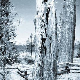 Mona Stut - Circle Of Life Tree Trunk Black