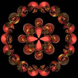 Nancy Pauling - Circles
