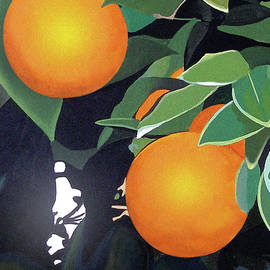 Joe Roselle - Citrus