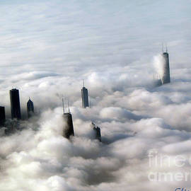 Gardening Perfection - City Above The Clouds Chicago