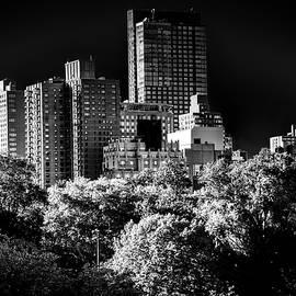 Kenneth Neal - City Noir Central Park 2