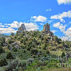 City Of Rocks 04   by Robert Bales