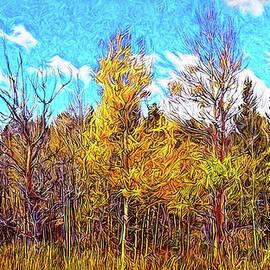 Joel Bruce Wallach - Clarity Of An Autumn Afternoon