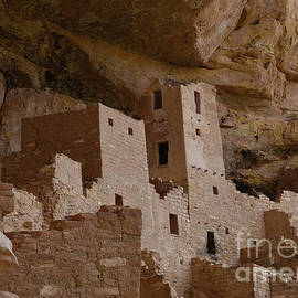 Cliff Palace Mesa Verde by Debby Pueschel