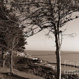 Cliff View in Black and White by Loretta S