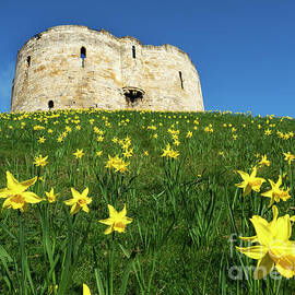 Mark Sunderland - Cliffords Tower in Spring