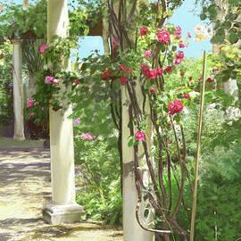 Climbing roses by Dominique Amendola