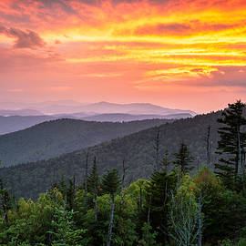 Clingmans Dome Great Smoky Mountains - Purple Mountains Majesty by Dave Allen