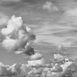 Tom Druin - cloud study