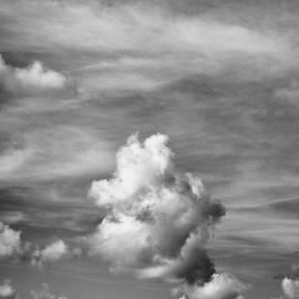 Tom Druin - cloud study ...vertical