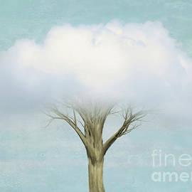 Hal Halli - Cloud Tree
