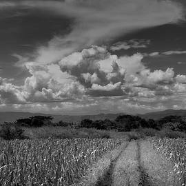 Clouds Ahuachapan 13 by Totto Ponce