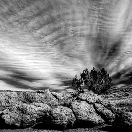 Jane Selverstone - Clouds over Chaco Mesa