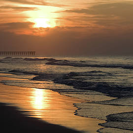 Coastal Carolina by Karen Wiles