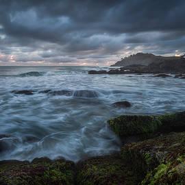 Richard Vandewalle - Coastal Elements