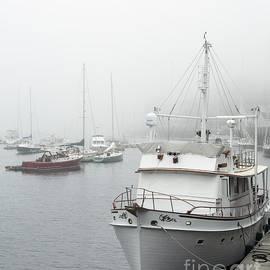 Coastal Fog by Karin Pinkham