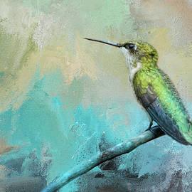 Jai Johnson - Coastal Hummingbird
