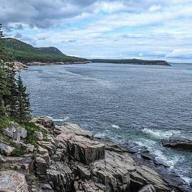 Coastal Landscape From Ocean Path Trail, Acadia National Park by NaturesPix