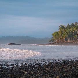 Coastal Zone by Paki O'Meara