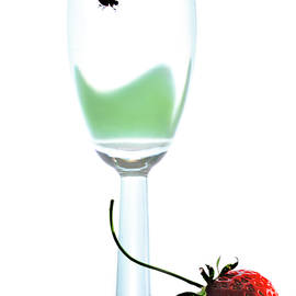 Cocktail  and strawberries on a white background by Larisa Fedotova
