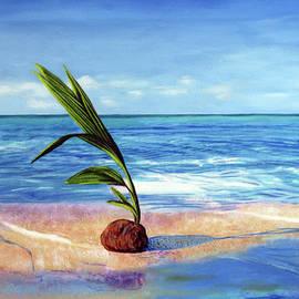 Coconut on beach by Jose Manuel Abraham