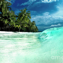 Coconut Water by Sean Davey