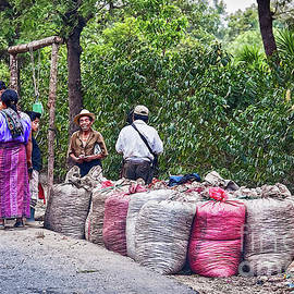 Coffee pickers in Guatemala by Tatiana Travelways