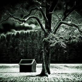 Edmund Nagele - Cold Spell