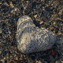 Cold Stone Heart at the Bottom of the Lake by Georgia Mizuleva