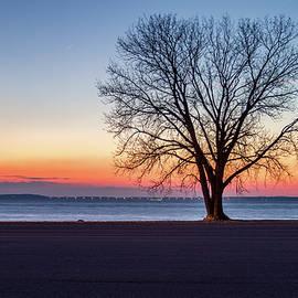 Art of Frozen Time - Coles Creek Sunset
