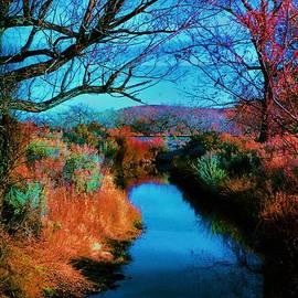 Diana Dearen - Color along the River