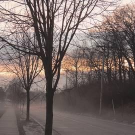 Karen Majkrzak - Beauty on Foggy Morning