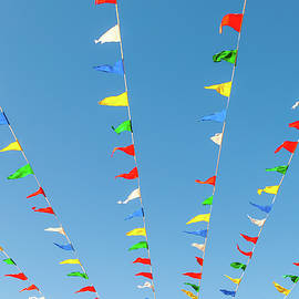 Color Pennants  by Len Tauro