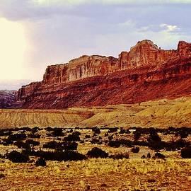 Christopher James - Colorado Mesa