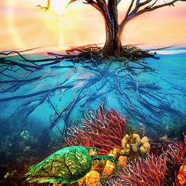 Debra and Dave Vanderlaan - Colorful Coral Seas