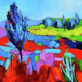 Elise Palmigiani - Colorful field