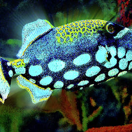 Andy Za - Colorful fish. On the seabed