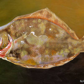 Phyllis Beiser - Colorful Flounder